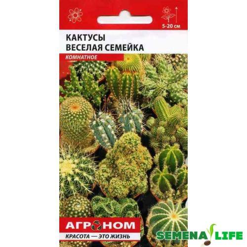 семена кактусы веселая семейка