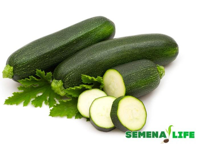 зеленый кабачок