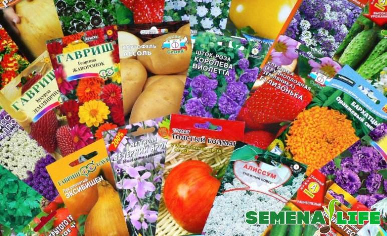 Семена в пакетиках