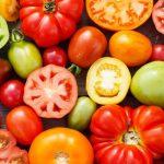 Выбор томатов