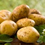 картофель из ягод