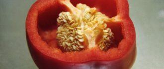 семена перца болгарского