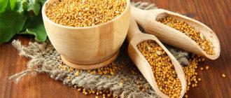 Как собрать семена горчицы